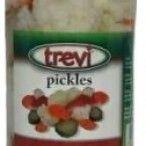 PICKLES TREVI FRASCO 360GRS (12)#